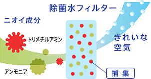 除菌水フィルターイメージ